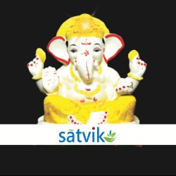 Satvik Eco Painted White...