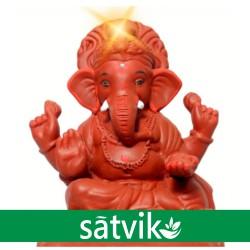 Satvik Natural Red Soil Eco...